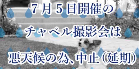 中止連絡_インスタ