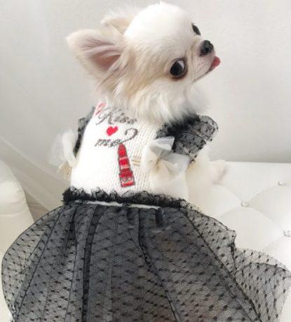 LGW226_Kiss me刺繍ワンピース_ブラック_着用
